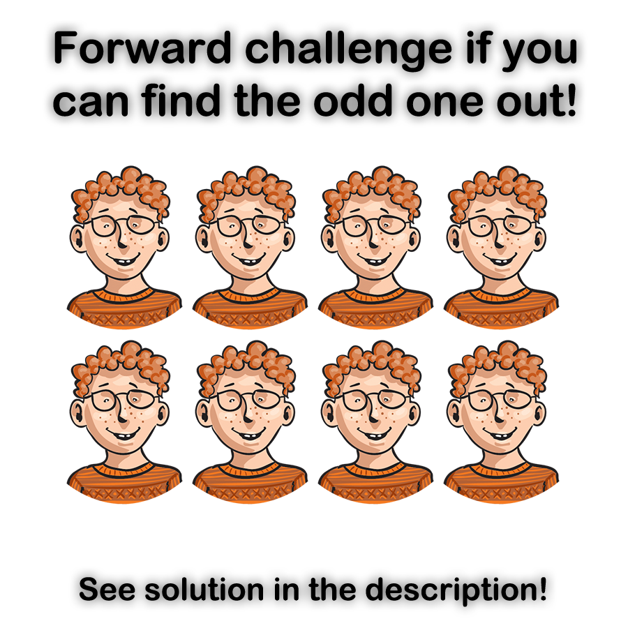 Odd One Out | Affirm Press |Hampsters The Odd Ones Out