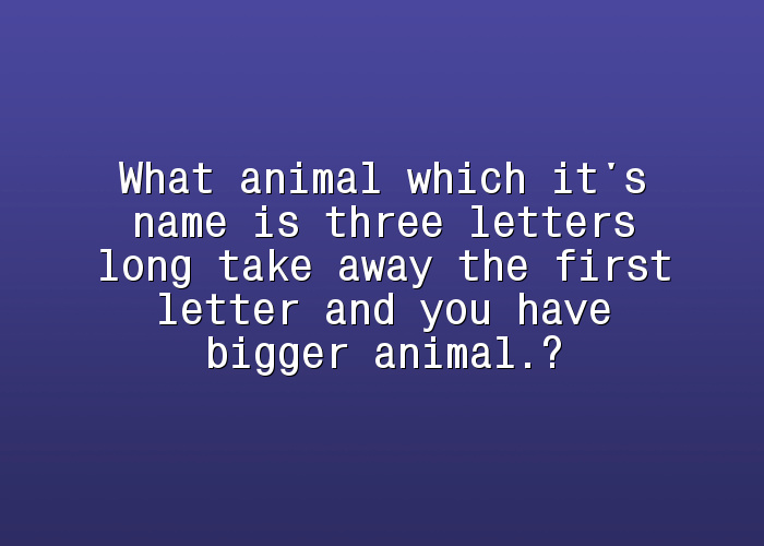braindare com what animal which it s name is three letters long